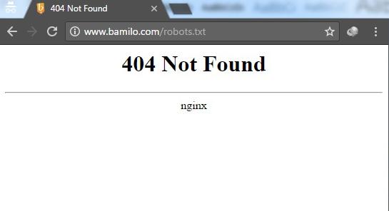 ارور 404 در زمان مشاهده فایل robots.txt