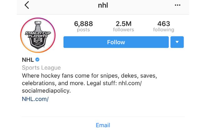 متن برای بیو اینستاگرام لیگ NHL