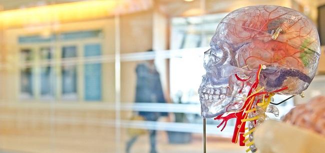 neuromarketing-feat بازاریابی عصبی یا نورومارکتینگ چگونه دنیای تبلیغات را دگرگون کرده است؟