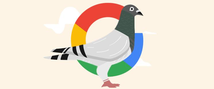 الگوریتم کبوتر گوگل چیست و چه تاثیری روی رتبه سایت شما دارد؟