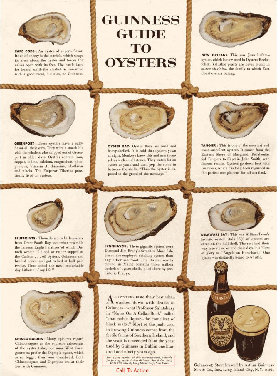 رپورتاژ-دیوید-اگیلوی-نوشیدنی-گینس-برای-صدفها