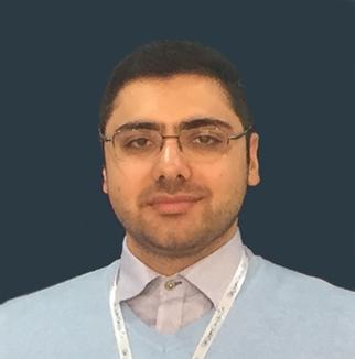 حامد رضوی